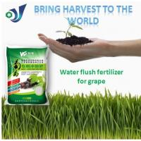 China Amino Acid Organic Fertilizer Supplements For Improve Germination And Plant Survival Rate of Grape on sale