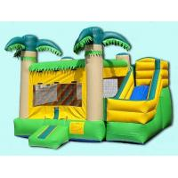 Inflatable Bouncer & Castle