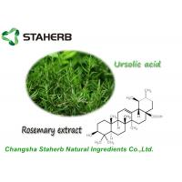 Antioxdent Rosemary Leaf Extract Ursolic Acid Powder For Cusmetic Product Manufactures