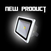 China 30W 3000K / 4000K IP65 CRI 75 Outdoor LED Flood Lights 110lm/W For Garden on sale