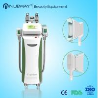 2014 New Best quality Cryolipolysis Slimming Cryotherapy Machine for Spa Manufactures