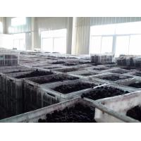 High Speed Fruit Juice Processing Line Scraper Film Evaporator Environmental for sale