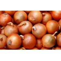 Golden Sweet Natural Fresh Onion Contains Pantothenic Acid ( B5 ) , Water, Better quality Manufactures