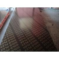 Waterproof film faced plywood,film faced plywood/China factory plywood/ finger joint film faced plywood Manufactures