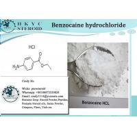 Local Anesthetic Pharmaceutical Raw Material Benzocaine Hydrochloride For Pain Relief Manufactures
