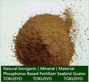 China Long Lasting Plant Nutrition Seabird Guano Fertilizer High Phosphorus on sale