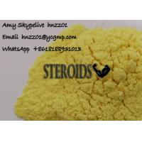 Yellow Powder Tren E Trenbolone Enanthate for Muscle Building Cycle custom clearance Manufactures