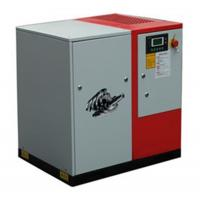 China High Quality Low Pressure 10 Bar  Screw Air Compressor Oil Free on sale