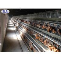 China A Type Poultry Chicken Cages Electric Galvanized Surface 120 Chicken Capacity on sale