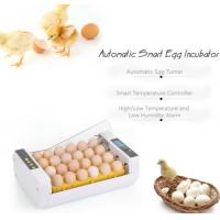 PVC Material Commercial Incubators For Hatching Eggs Micro Computer Control Manufactures