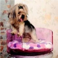 Durable Acrylic Pet Bed, Pink and Round, for Dog/Cat, Measuring 495 x 228mm Manufactures