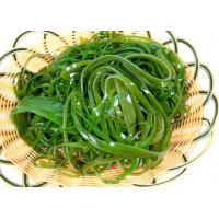 Fresh Green Dried Sea Kelp Nutritious Sun Dry Processing For Soup Manufactures
