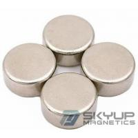 China N38 Quality Disc Neodymium Magnets/Rare Earth Neo Ndfeb with different dimension on sale