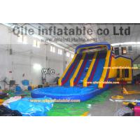 Buy cheap inflatable wet & dry slide with pool,pool can removed ,double wave slide from wholesalers