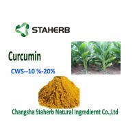 Natural Curcumin Organic Food Additives Turmeric Powder CWS - Curcumin 10% Manufactures