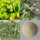 China Epimedium Extract Powder on sale