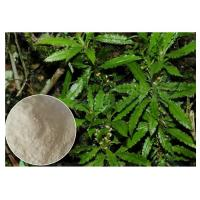 99% Huperzia Serrata Herbal Plant Extract Powder For Alzheimer'S Diseases Manufactures