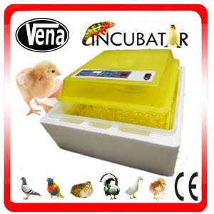 Professional Electronic Thermostat control mini eggs incubator machine mini duck incubators VA-48 for sale Manufactures