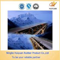 Ep315/3 Cold-Resistent Rubber Conveyor Belt for Cool Condition(-45degree) Manufactures