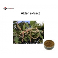 Buy cheap 10:1 Food-grade Light brown powder Alder extract from wholesalers