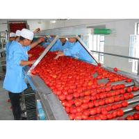 SUS304 Fruit Juice Processing Line Turnkey Project For Tomato Apple Strawberry Manufactures