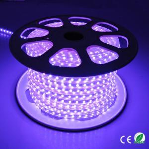 220V High Voltage Multi Color LED Rope Light 60 Leds / Meter Easy To Install Manufactures