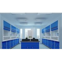 Customized Cleaning Laboratory Equipment Portable Laboratory Fume Hood Manufactures