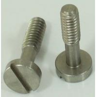 Stainess Steel CNC Precision Machining 1/4 Metal Camera Screw