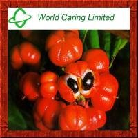Herbal Extract Guarana Extract Guaranaine10%-20% for weight loss Manufactures