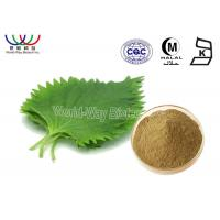 China Mulberroside Mulberry Leaf Extract , Yellow Powder Mulberry Extract For Diabetes on sale