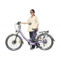 Electric Pedelec bike with 250W and CE EN15194, durable and reliable, front drive bike Manufactures
