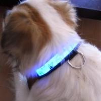 Reflective NylonLED Dog Lead With Padded Handle Manufactures