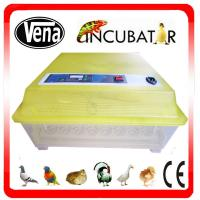 Best price energy-saving automatic small incubator for parrot egg hatching VA-48 Manufactures