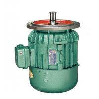 Standard Conical Rotor Three-Phase Asynchronous Motor For Crane , IP44 Manufactures
