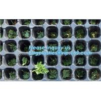 China plastic nursery tray seedling tray have different numbers cups,Plastic Flowers Seedling Hydroponics Nursery Trays, BIO on sale
