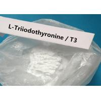 China 99% Weight Loss Steroids T3 CAS 55-06-1 L-Triiodothyronine Anabolic Steroid Hormone White Powder T3 L-Triiodothyronine on sale