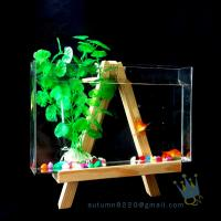 Fake glass acrylic custom fish aquarium with wood base Manufactures