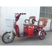 Two Persons 3 Wheel Electric Tricycle Scooter 800W Brushless Steel Frame Manufactures