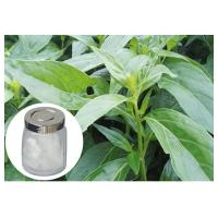 Herb Andrographis Paniculata Extract , 98% Andrographis Paniculata Powder Manufactures