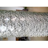 White Color Plastic Poultry Netting / Chicken Wire Mesh Roll With Hexagonal Holes Manufactures