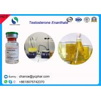 High Purity Injectable Testosteroneenanthate / Test E Steroids 100mg/Ml 300mg/Ml For Bodybuilding Manufactures