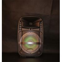 Rechargeable Lithium Battery Portable Trolley Speakers With Fm Radio Function