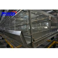 China automatic chicken layer cage/chicken egg poultry farm equipment/small chicken on sale
