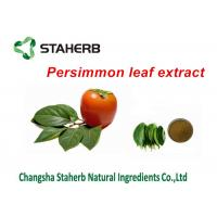Persimmon Leaf Extract Pure Natural Plant Extracts Folium Kaki Extract Powder Manufactures