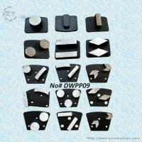 China Replaceable Diamond Grinding Pads - DWPP09 on sale