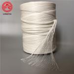 High Flame Retardant Filler / High temperature filling rope / PP filler rope Manufactures
