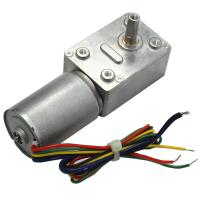 32mm Brushless DC Worm Gear Motor 24V for Precision Equipment / Household Appliances Manufactures