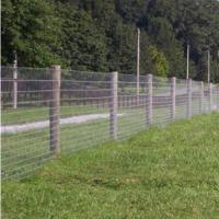 China Field Fence|Wire Farm Fence by Hot Dipped Galvanized Wire for Cattle/Deer on sale