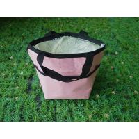 Outdoor Insulated Picnic Travel Cooler Bag Large Capacity For Hiking Manufactures