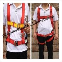 Safety Harness & Belt&lineman belt,Adjustable safety belt&safety harnesses Manufactures